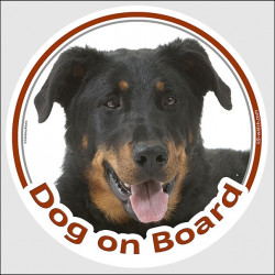"Sticker circle sticker ""Dog on Board"" 15 cm, Beauceron Head decal label adhesive French beach Shepherd"