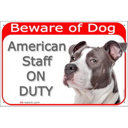 gate sign red 24 cm beware of dog Amstaff grey blue on duty plate panel, american staffordshire terrier