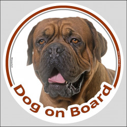 "Circle sticker ""Dog on board"" 15 cm, Black Mask Dogue de Bordeaux Head, french mastiff decal label"