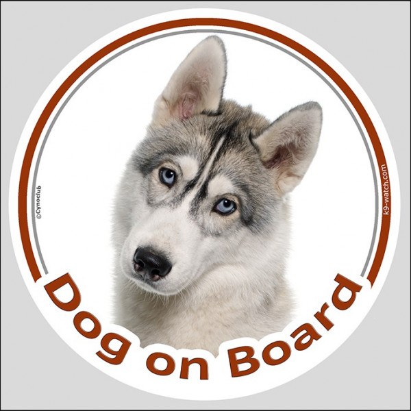 "Circle sticker ""Dog on board"" 15 cm, Grey Siberian Husky Head decal label car"