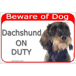 Portal Sign red 24 cm Beware of Dog, wirehaired Dachshund on duty, Gate plate Dackel Teckel Doxie Weenie photo notice