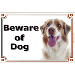 Portal Sign, 2 Sizes Beware of Dog, Red Merle Australian Shepherd head, Gate Plate Aussie