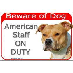 """Red portal Sign red """"Beware of Dog, Fawn Amstaff on duty"""" Gate plate American Staffordshire Terrier photo notice"""