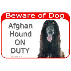 Portal Sign red 24 cm Beware of Dog, Black and Tan Afghan Hound on duty, Gate sign, azi, Tazhi Spay, Da Kochyano, Sage Balochi,