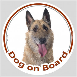 "Circle sticker ""Dog on board"" 15 cm, Belgian Laekenois Head, decal label shepherd belgium"