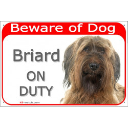 Portal Sign red 24 cm Beware of Dog, Fawn Briard on duty, Gate plate Berger de Brie placard panel