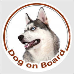 "Circle sticker ""Dog on board"" 15 cm, Grey Siberian Husky Head, Decal adhesive car label"