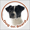 """Circle sticker """"Dog on board"""" 15 cm, Black and White Jack Russell Terrier Head, Decal adhesive car label"""