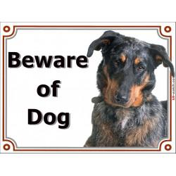 Portal Sign, 2 Sizes Beware of Dog, Merle Beauceron head, Gate plate Arlequin beach shepherd bas rouge, portal placard panel
