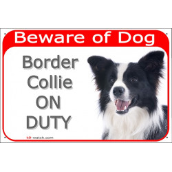 Portal Sign red Beware of Dog, Black and White Long Hair Border Collie on duty, Gate plate Scottish Sheepdog, portal placard