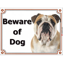 "Fawn & White English Bulldog, portal Sign ""Beware of Dog"" Door Plate red British, portal placard photo notice"