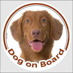 "Circle sticker ""Dog on board"" 15 cm, Nova Scotia Duck Tolling Retriever Head, decal label adhesive car Toller"