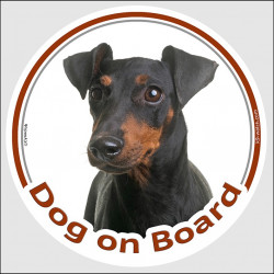 "Circle sticker ""Dog on board"" 15 cm, Manchester Terrier Head, decal label car adhesive photo notice"
