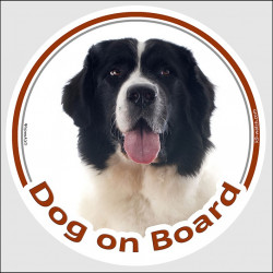 "Circle sticker ""Dog on board"" 15 cm, Landseer Head, decal car label adhesive"