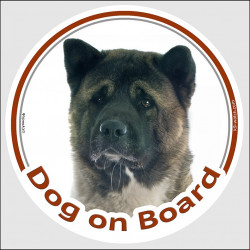 "Brindle American Akita Head, car circle sticker ""Dog on board"" decal adhesive car label usa photo notice"