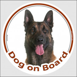 "Circle sticker ""Dog on board"" 15 cm, Belgium Shepherd Malinois Head, decal adhesive car label belgian dark"