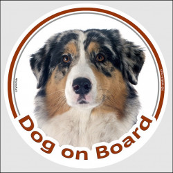 "Circle sticker ""Dog on board"" 15 cm, Blue merle Australian Shepherd Head, decal adhesive car label Aussie"