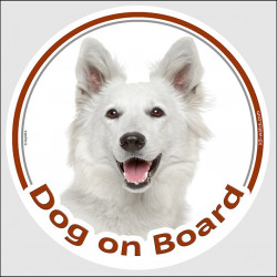 "Circle sticker ""Dog on board"" 15 cm, American White Shepherd Head, decal adhesive car label Canadian WS"