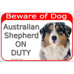 Portal Sign red 24 cm Beware of Dog, Merle Blue Australian Shepherd on duty, door plate, portal placard Aussie Gate panel