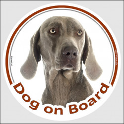 "Circle sticker ""Dog on board"" 15 cm, Weimaraner Head, decal adhesive car label Vorstehhund"
