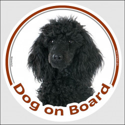 "Circle sticker ""Dog on board"" 15 cm, Black Poodle Head, decal adhesive car label"