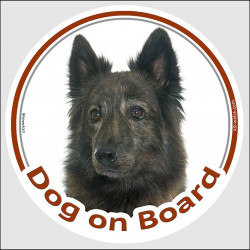 "Circle sticker ""Dog on board"" 15 cm, Brindle long hair Dutch Shepherd Head, decal adhesive car label hollandaise herder"