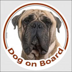 "Light fawn Bullmastiff Head, circle sticker ""Dog on board"" decal adhesive car label photo notice"