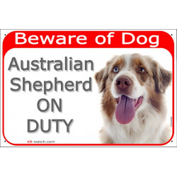 Portal Sign red 24 cm Beware of Dog, Red Merle Australian Shepherd on duty, decal adhesive car label