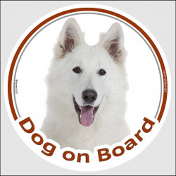 "Circle sticker ""Dog on board"" 15 cm, American White Shepherd Head, decal adhesive car label WS"