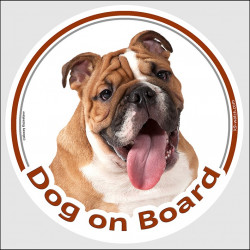 "Circle sticker ""Dog on board"" 15 cm, fawn & white English Bulldog Head, decal adhesive car label British red"