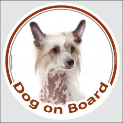 "Circle sticker ""Dog on board"" 15 cm, Chinese crested dog Head, decal adhesive car label Puff"