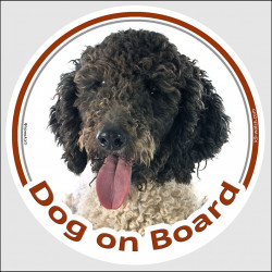 "Circle sticker ""Dog on board"" 15 cm, black & white Spanish Water Dog Head, decal adhesive car label"