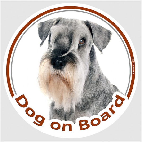 "Circle sticker ""Dog on board"" 15 cm, Salt and Pepper Schnauzer Head, decal adhesive car label grey"