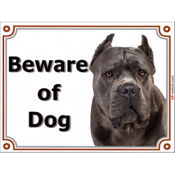 Portal Sign, 2 Sizes Beware of Dog, Blue Cane Corso head, gate plate Grey Italian Mastiff , Door placard panel