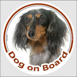 "Circle sticker ""Dog on board"" 15 cm, Tri merle long-haired Dachshund Head, decal adhesive car label Doxie blue"