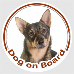 "Circle sticker ""Dog on board"" 15 cm, Swedish Vallhund Head, decal adhesive car label Cattle Shepherd"