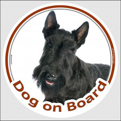 "Circle sticker ""Dog on board"" 15 cm, Black Scottish Terrier Head, decal adhesive car label scottie"
