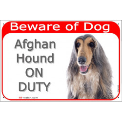 Portal Sign red 24 cm Beware of Dog, blue & cream Afghan Hound on duty, gate plate grey hound