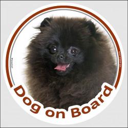 "Circle sticker ""Dog on board"" 15 cm, Black Pomeranian Head, deutsche spitz decal adhesive car label pom"