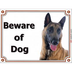 "Belgium Shepherd Malinois, portal Sign ""Beware of Dog"" gate plate placard panel photo notice"