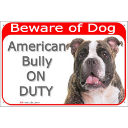 Portal Sign red 24 cm Beware of Dog, Brindle American Bully on duty, gate plate placard panel