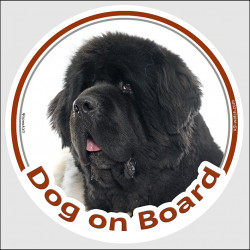"Circle sticker ""Dog on board"" 15 cm, black and white Newfoundland Head decal adhesive car label"