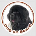 "Circle sticker ""Dog on board"" 15 cm, Black and White Newfoundland Head"