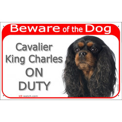 Portal Sign red 24 cm Beware of the Dog, black and tan Cavalier King Charles Spaniel on duty, gate plate placard panel