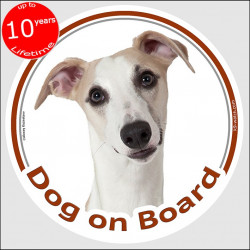 "Circle sticker ""Dog on board"" 15 cm, fawn Whippet Head, decal adhesive car label snap dog"