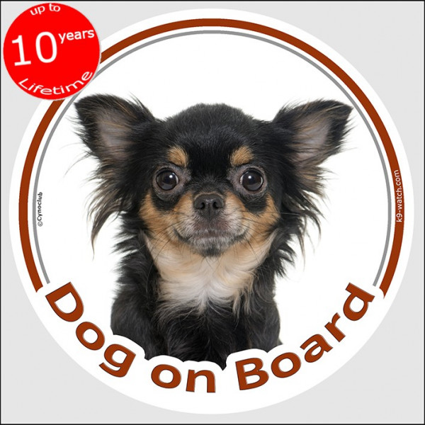"Circle sticker ""Dog on board"" 15 cm, Black and Tan longhaired Chihuahua Head, decal adhesive car label long hair"