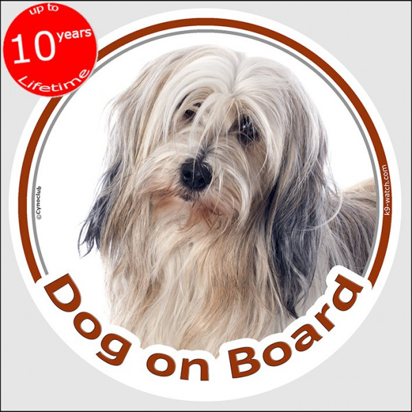 """Circle sticker """"Dog on board"""" 15 cm, golden and white Tibetan Terrier Head, decal adhesive label fawn"""