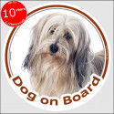 "Circle sticker ""Dog on board"" 15 cm, golden and white Tibetan Terrier Head"