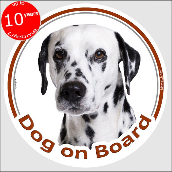 "Circle sticker ""Dog on board"" 15 cm, Dalmatian Head, decal adhesive car label, carriage spotted coach plum pudding"