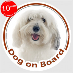 "Circle sticker ""Dog on board"" 15 cm, Coton de Tuléar Head, decal adhesive car label cotie"